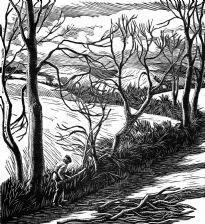 wood-engraving original print: Hedge Trimming for Farmer's Glory